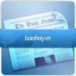 BaoHay 3  icon download