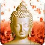 Đức Phật hình nền động