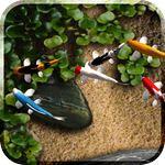 Koi Free Live Wallpaper  icon download