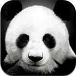 AnimalPix for iPad