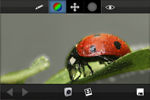 ColorUp Pro  icon download