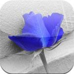 ezColor Lite icon download