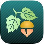 Focus on Plant  icon download