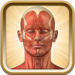 Know Your Body Free  icon download
