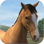 My Horse for iOS