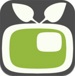 Video in Video  icon download