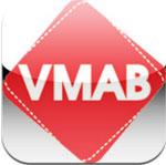 VMAB 2013