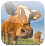 Zoo Box icon download